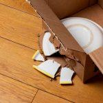 Broken Plate in Moving Box